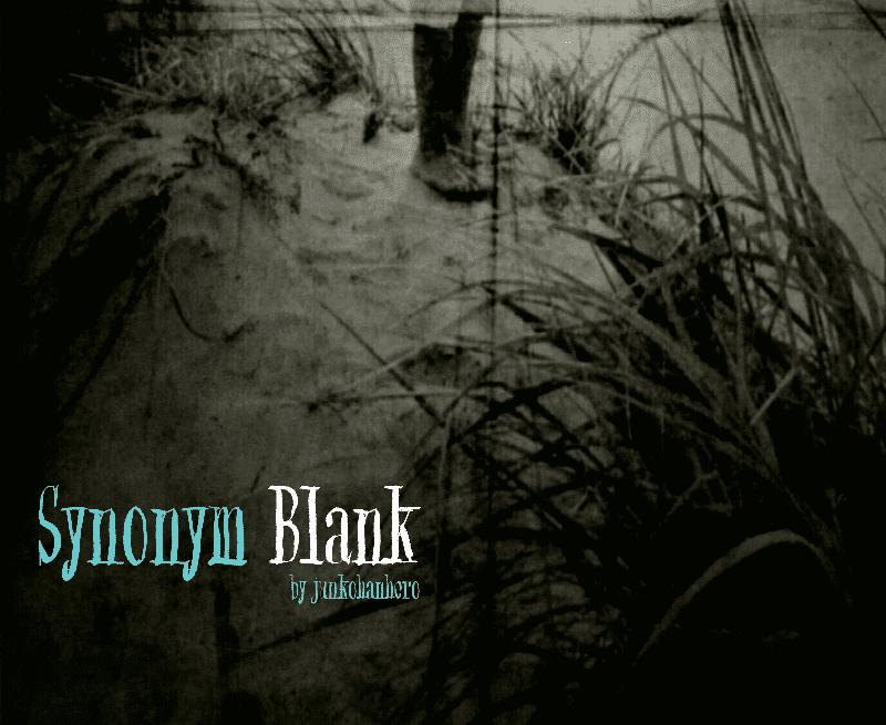 synonym blank font