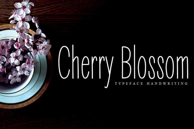 Cherry Blossom Display Font