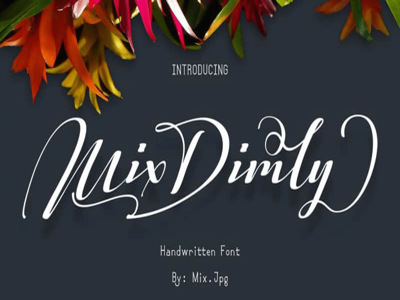 Mix Dimly Script Font