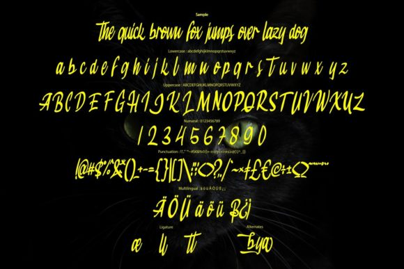 Jackbaya Modern Script Font